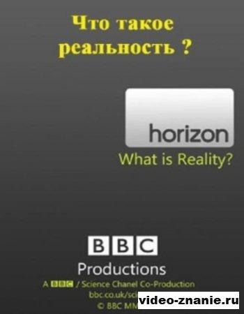 Что такое реальность? (2011)