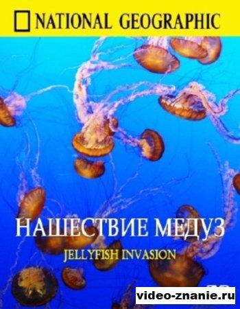 Нашествие медуз (2007)