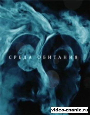 Среда обитания - Восстание чайников (2010)