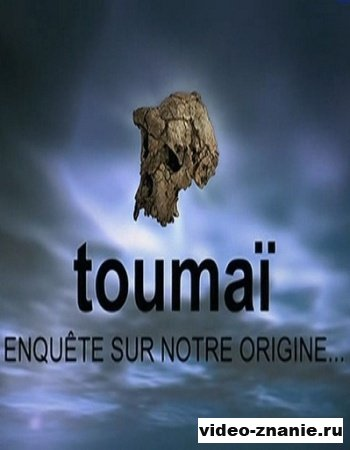 Тумаи - прачеловек из Чада (2008)