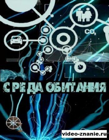 Среда обитания / Шампунь на вашу голову (2010)