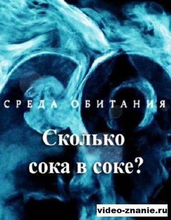 Среда обитания. Сколько сока в соке? (2010)