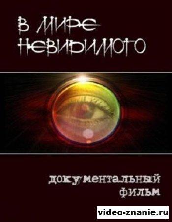 В мире невидимого (2011)
