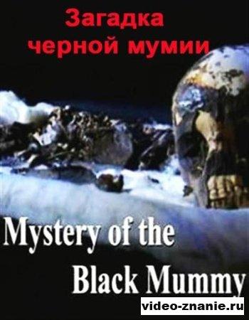 Загадка черной мумии (2009)