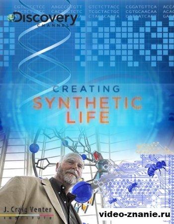 Создание синтетической жизни (2010)