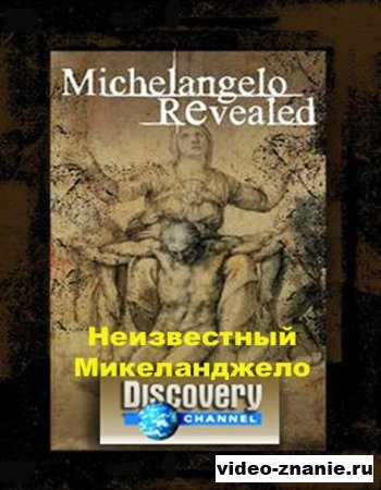 Неизвестный Микеланджело (2008)