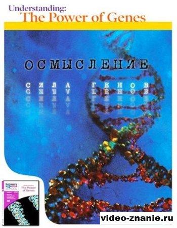 Осмысление. Сила генов (2005)