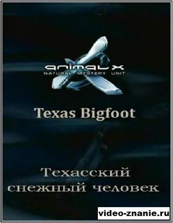 Неопознанные живые объекты. Техасский снежный человек (2008)