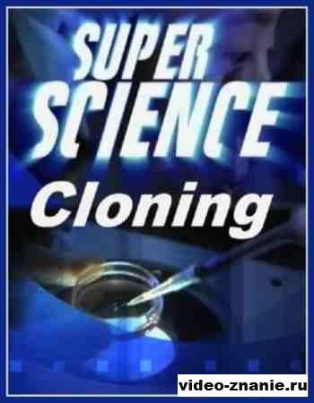 Супер Наука. Клонирование. Южная Корея (2009)