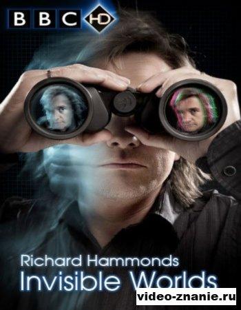 Невидимые миры (2010)