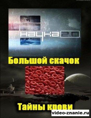 Наука 2.0. Большой скачок. Тайны крови (2011)