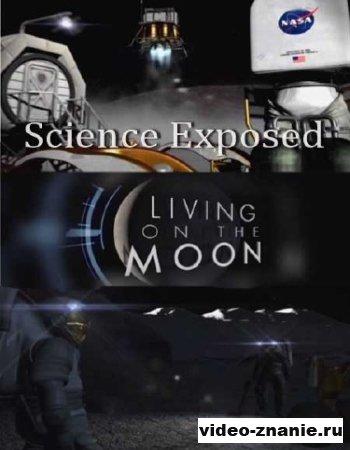Неразгаданный мир. Жизнь на луне (2011)