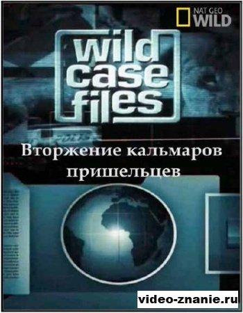 Секретные материалы природы. Вторжение кальмаров пришельцев (2011)