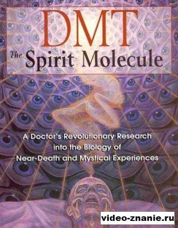 ДМТ: Mолекула Духа (2010)