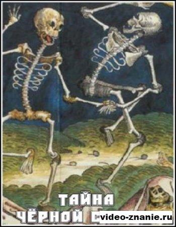 Тайна чёрной смерти (2005)