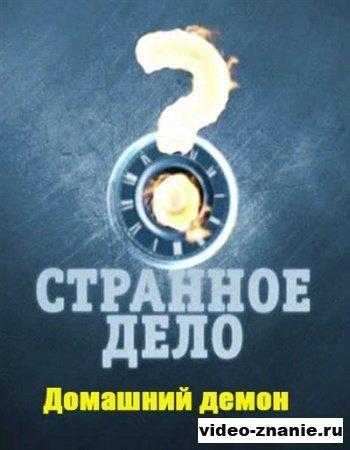 Странное дело. Домашний демон (2012)