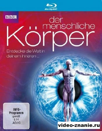 Внутри человеческого тела / Тайны человеческого тела (2011)
